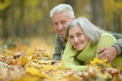 Elderly couple lying on autumnal leaves Royalty Free Stock Image