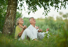 Elderly  couple on nature  at summer Royalty Free Stock Photography