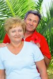Elderly couple near the palm-tree. Stock Image