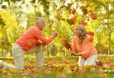 Elderly couple in the orange Royalty Free Stock Images