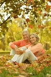Elderly couple in the orange Royalty Free Stock Photo