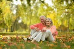 Elderly couple in the orange Stock Photography