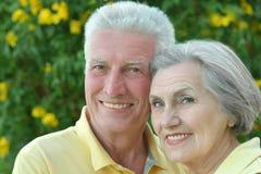 Elderly couple on palm leaves background. Nice elderly couple on palm leaves background Royalty Free Stock Image