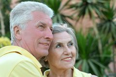 Elderly couple on palm leaves background. Nice elderly couple on palm leaves background Royalty Free Stock Photos