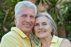 Elderly couple on palm leaves background. Nice elderly couple on palm leaves background Royalty Free Stock Photo