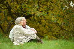 Elderly couple in the park Stock Photos