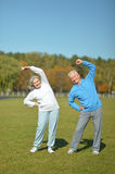 Elderly couple in the park royalty free stock images