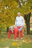 Elderly couple in the park Stock Images