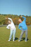 Elderly couple in the park Royalty Free Stock Photos