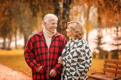 Elderly couple in park royalty free stock images