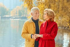 Elderly couple in park stock images