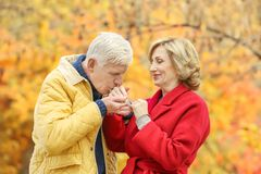 Elderly couple in park royalty free stock image