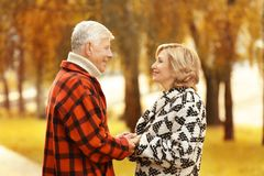 Elderly couple in park royalty free stock photo