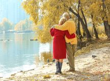 Elderly couple in park stock photos