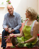 Elderly couple in patio Royalty Free Stock Image