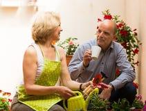 Elderly couple in patio Stock Image