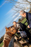 Elderly couple petting a horse in a paddock Royalty Free Stock Photography