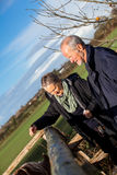 Elderly couple petting a horse in a paddock Royalty Free Stock Images
