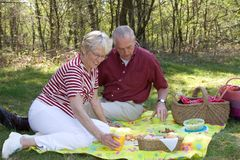 Elderly couple pic-nic Royalty Free Stock Photo