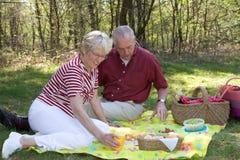 Elderly couple pic-nic