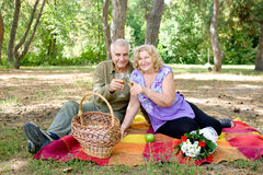 Elderly couple picnicking Stock Images