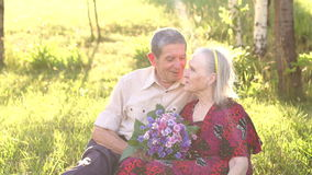 An elderly couple sitting in the Park on the grass stock video footage