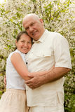 Elderly couple in spring Royalty Free Stock Photography