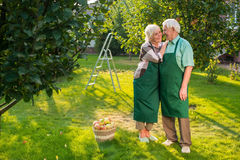 Elderly couple standing on grass. Stock Photos
