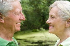Elderly couple in a summer park Stock Images