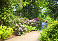 Elderly couple take a walk in Munich Botanical Garden Stock Photography