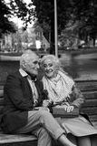 Elderly couple talking on a park bench. Black and white. Walk. Elderly couple talking on a park bench. Black and white. True love Royalty Free Stock Image