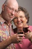 Elderly Couple Toasting Stock Photos