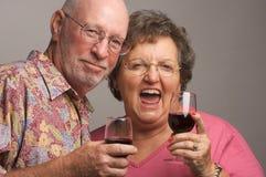 Elderly Couple Toasting Royalty Free Stock Image