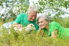 Elderly couple with toy sheep Royalty Free Stock Image