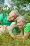 Elderly couple with toy sheep Stock Images