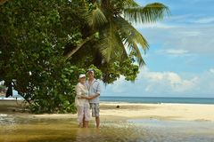 Elderly couple  at tropical beach Stock Image