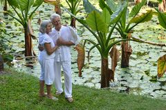 Elderly couple  in tropical garden Stock Images