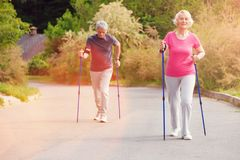 Elderly couple using walking canes stock photo