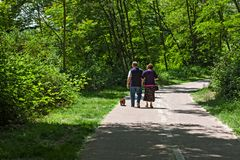Couple walk with their dog in the park. An elderly couple walk with their dog in the park Stock Photography