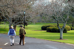 Elderly Couple Walking. In a park royalty free stock photography