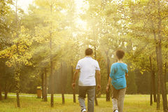 Elderly couple walking back view royalty free stock photos