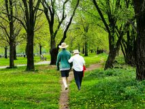 Elderly Couple Walking Through The Park. An elderly couple walking on a path through a beautiful green tree landscape stock photography