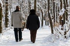 Elderly couple walking in the park Stock Image
