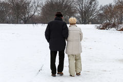 Elderly couple walking in the park Stock Images