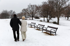 Elderly couple walking in the park Royalty Free Stock Photos