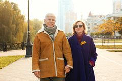 Elderly couple walking in the street. On autumn day Stock Photography