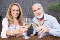 Elderly couple with wine. Elderly couple in garden drinking wine Royalty Free Stock Photo