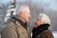 Elderly couple in winter park stock photography
