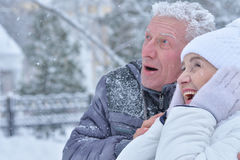 Elderly couple in winter Stock Photography