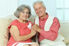 Elderly couple on wooden porch Royalty Free Stock Photography